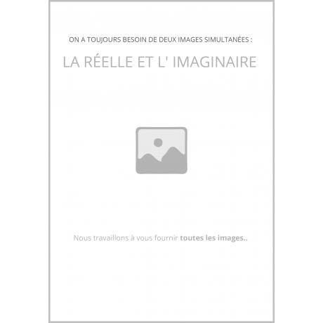 Camille Flammarion (Grandes biographies)
