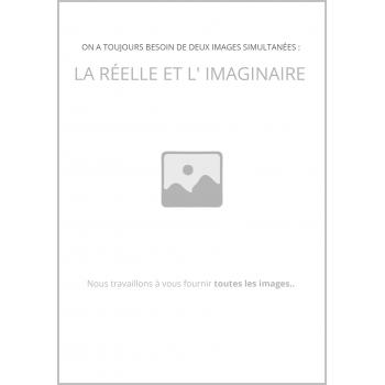 Maxi compil de fiches - Contrôle continu 1re (Special bac)
